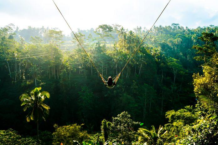Bali Swing ở ruộng bậc thang Tegallalang Bali