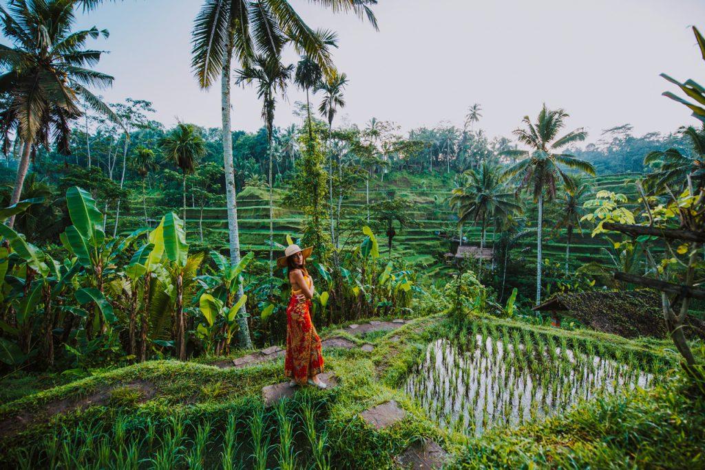 Sắc đỏ tuyệt vời của khách du lịch tại ruộng ở Bali